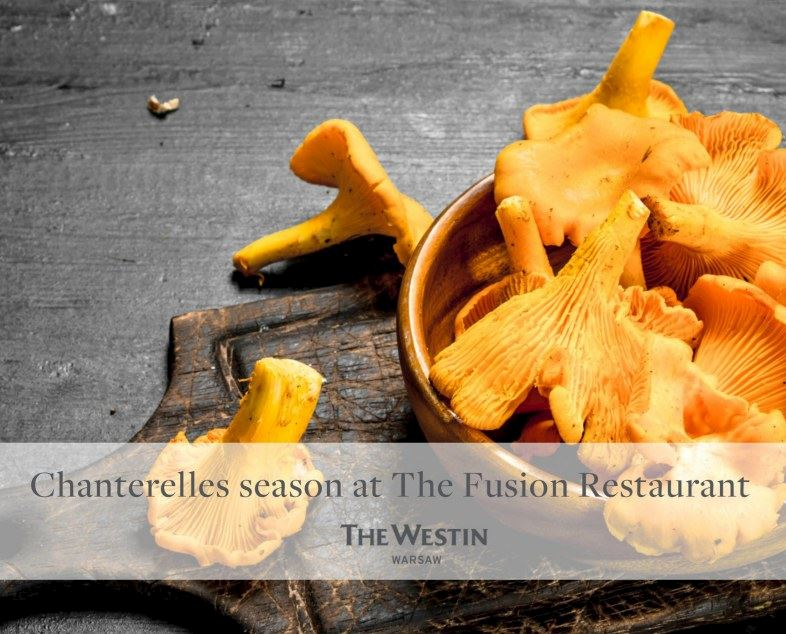 Chanterelles Menu